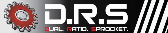 DRS web logo large